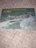 Животные, Куба, фото №2