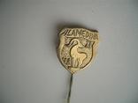 """Знак""""Аламедина-82"""" альпинизм Киргизия горы, фото №2"""