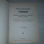 1904 г. Полное практическое руководство для собирания дорогих русских монет Репринт, фото №3