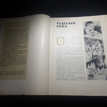 Молочная пища 1962 г., фото №5