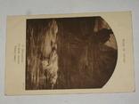 Открытка до 1917 P. Delaroche №65, фото №3