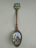 Ложка с эмалью, фото №2