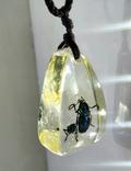 Кулон жуки в эбоксидке, на шнурке, фото №6