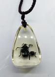 Кулон жуки в эбоксидке, на шнурке, фото №10
