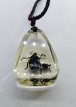 Кулон жуки в эбоксидке, на шнурке, фото №11