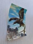 Немецкая ретро 3D открытка, фото №4