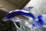 Дельфин стекло, Европа, фото №9