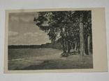 Открытка 1910-1950 годы.  Лейпциг ДТВ №116, фото №2