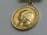 """Медаль """"Polakom byym onierzom Armii Czerwonej"""" золотого кл., фото №5"""