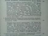 """""""Европейская философия ХV-ХVII веков"""" 1984г., фото №9"""