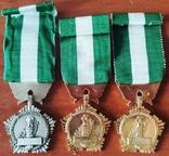 Франция, Комплект медалей за выслугу комунального хозяйства, фото №3