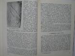 """""""Запровадження християнства на Русі"""" 1988 год, тираж 5 000, фото №9"""