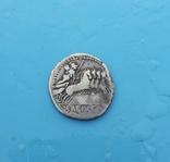 90 год до н. э. Монетарий - C. Vibio Pansa, фото №6