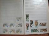 Почтовые марки 2, фото №7
