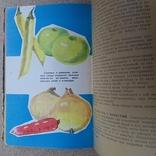 """Кравцов """"Домашнее консервирование и хранение пищевых продуктов"""" 1967р., фото №6"""