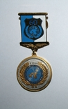 "Медаль ""4 года Межд.комитета ООН по защите прав человека в Украине"", фото №4"