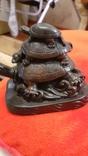 Черепахи., фото №6
