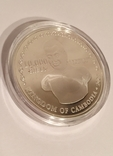 Монета Камбоджи золото-серебряная, фото №10