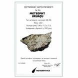 Залізний метеорит Uruacy, 4.02 г, із сертифікатом автентичності, фото №3