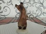 Мышка лфз, фото №5