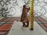 Мышка лфз, фото №8