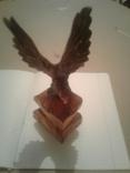 Орёл,дерево., фото №2