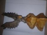 Орёл,дерево., фото №3