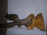 Орёл,дерево., фото №4