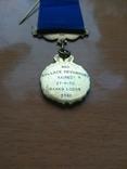 Серебряная награда Старинного Королевского Ордена Буйволов, фото №9