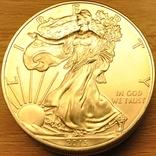 1 доллар 2013г. Американский серебряный орел. 5шт., фото №2