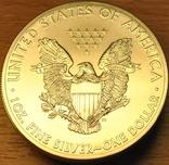 1 доллар 2013г. Американский серебряный орел. 5шт., фото №3