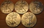 1 доллар 2013г. Американский серебряный орел. 5шт., фото №5