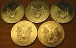 1 доллар 2013г. Американский серебряный орел. 5шт., фото №6