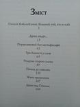 """""""Тінь СЛОВА"""" А. Стожук.""""2015р. 300 прим. дарчий напис., фото №6"""