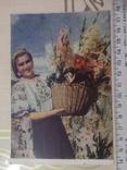 Открытка №34 Укроинка, фото №2