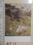 Открытка № 35, фото №2