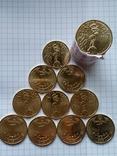 1 ГРИВНЯ 2015 (МАКИ), 10 монет из ролла., фото №3