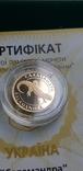 Золото 2 гривні 2003 року Саламандра, фото №4