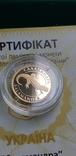Золото 2 гривні 2003 року Саламандра, фото №5