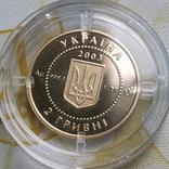 Золото 2 гривні 2003 року Саламандра, фото №8