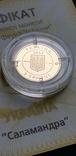 Золото 2 гривні 2003 року Саламандра, фото №10