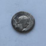 Денарий Республика серебро 3.84 г, фото №2