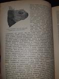 1928 На краю света. Экспедиция на Галапагосские острова в 1923-24 годах, фото №3