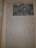 1928 На краю света. Экспедиция на Галапагосские острова в 1923-24 годах, фото №8
