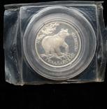 """Один Рубль 1994-го года """" Гималайский медведь """" ( серебро 900 пробы ), фото №2"""