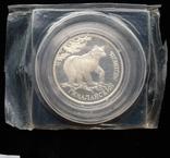 """Один Рубль 1994-го года """" Гималайский медведь """" ( серебро 900 пробы ), фото №6"""