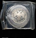 """Один Рубль 1994-го года """" Гималайский медведь """" ( серебро 900 пробы ), фото №8"""