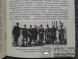 Американский кокер спаниель.(Содер., кормл., разв., леч.), фото №12