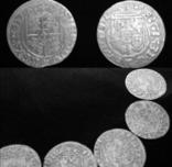 13 монет Сигизмунд, фото №3