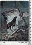 Первая мировая. Агитационная открытка. 1916 год.(3), фото №2
